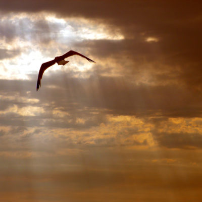 Ἡ ἡμέρα τοῦ Ἁγίου Πνεύματος
